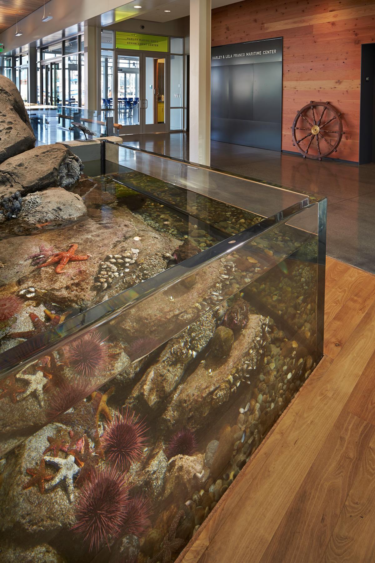 Harley and Lela Franco Maritime Center Lobby and Aquarium Tank